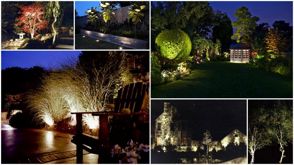 Rzeźbienie światłem W Ogrodzie Ogrodnik Tomek