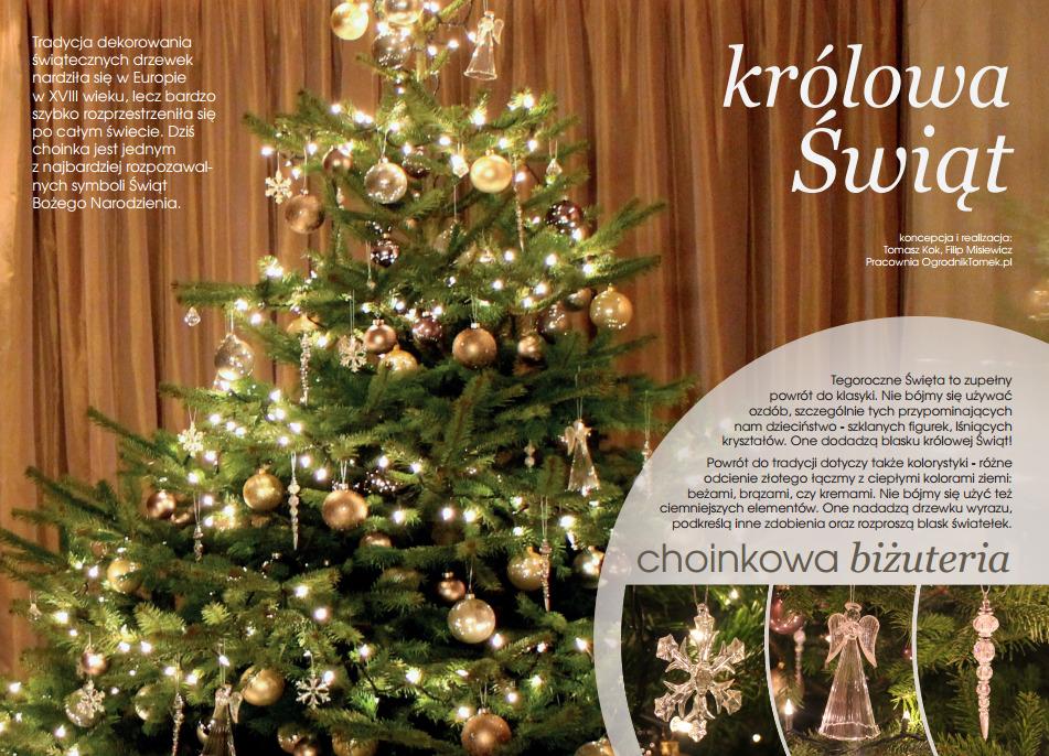 Dostawa I Ubieranie Choinek Dekoracje świąteczne Do Biur I Domów