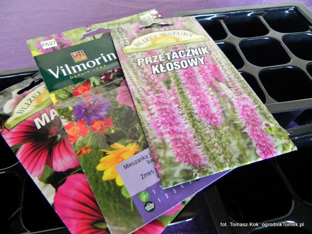 Sianie Nasion Kwiatów Jednorocznych Ogrodnik Tomek