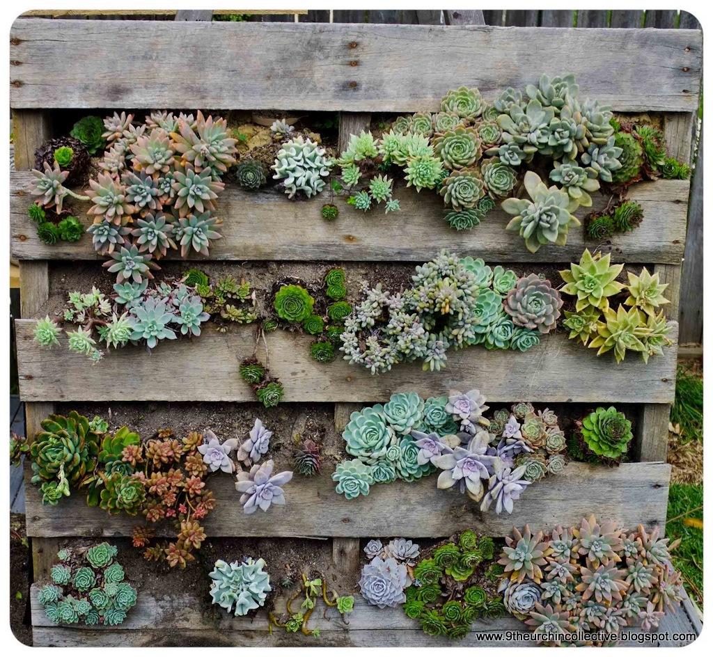 Palety w ogrodzie inspiracje zdj cia porady ogrodnik for Jardines verticales con madera