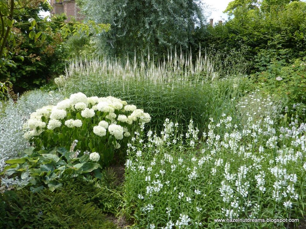 Bia y ogr d inspiracje zdj cia bia e ro liny for White garden design