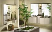 Rośliny do łazienki