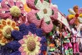 Parada kwiatów 2014 - Bloemencorso Bollenstreek