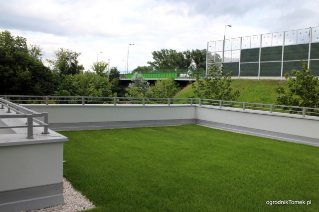 Zielony dach wykonany przez naszą ekipę.