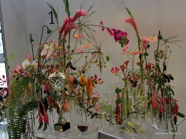 Gardenia 2016 10