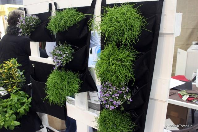 System zielonych ścian