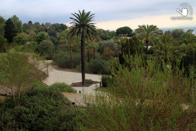 Barcelona Botanic Garden 27