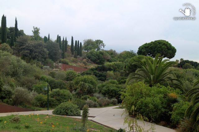 Barcelona Botanic Garden 29