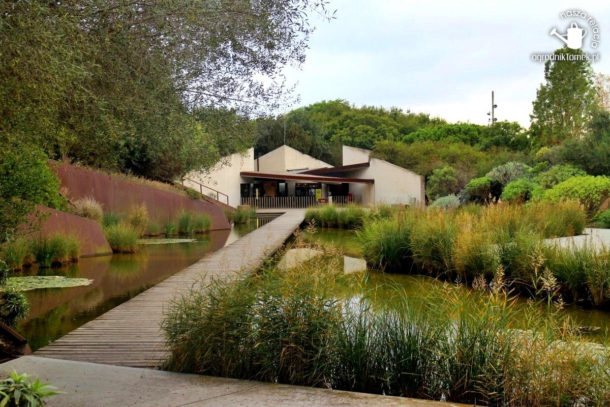 Ogród botaniczny w Barcelonie – podróże ogrodnika Tomka cz. I – El Jardí Botànic de Barcelona