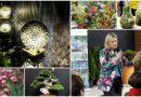 Targi Green Days 2018 – relacja z targów ogrodnictwa i architektury krajobrazu
